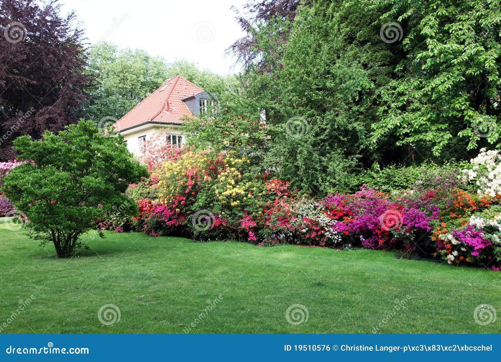 Mooi huis met tuin stock foto afbeelding bestaande uit rododendron 19510576 - Mooi huis ...