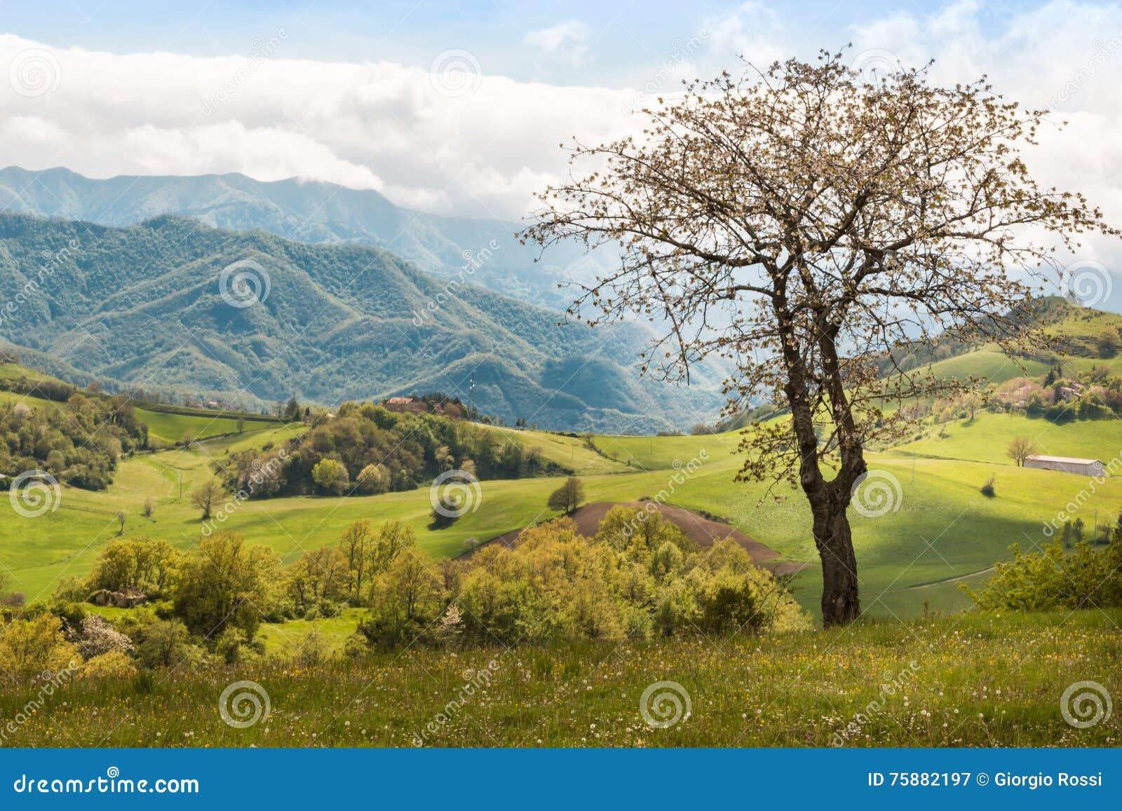 Mooi Italiaans Plattelandslandschap over Rolling Heuvels en B