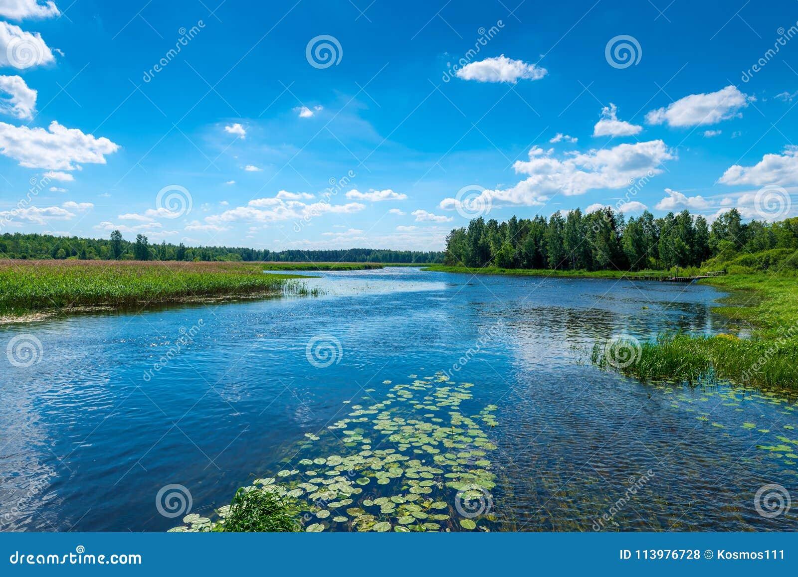 Mooi landschap - een rivier met duidelijk water, groene bosa