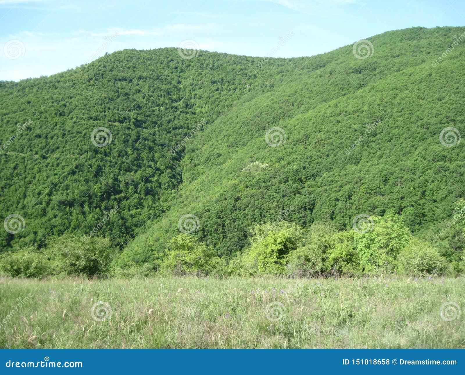 Mooi landschap in Jasenje, Servië
