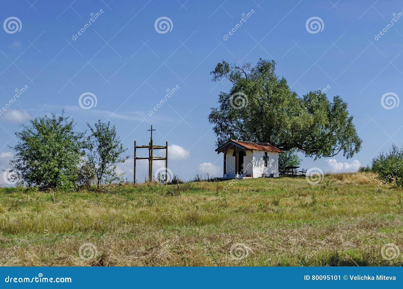 Mooi landschap van de vooruitgangszomer met eerbiedwaardige berkboom en oude kapel