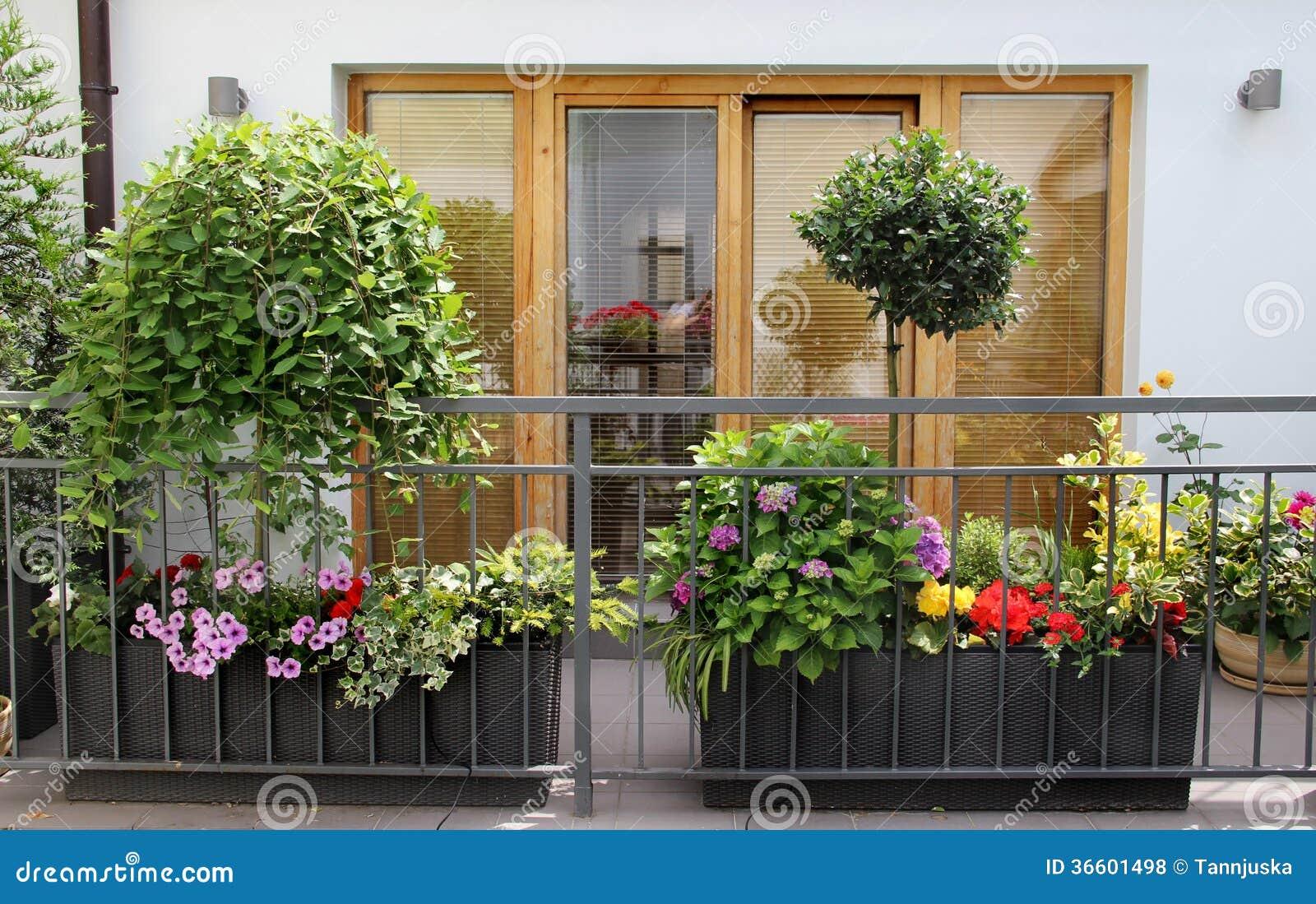Mooi modern terras met heel wat bloemen stock foto afbeelding 36601498 for Wat lemmet terras betekent