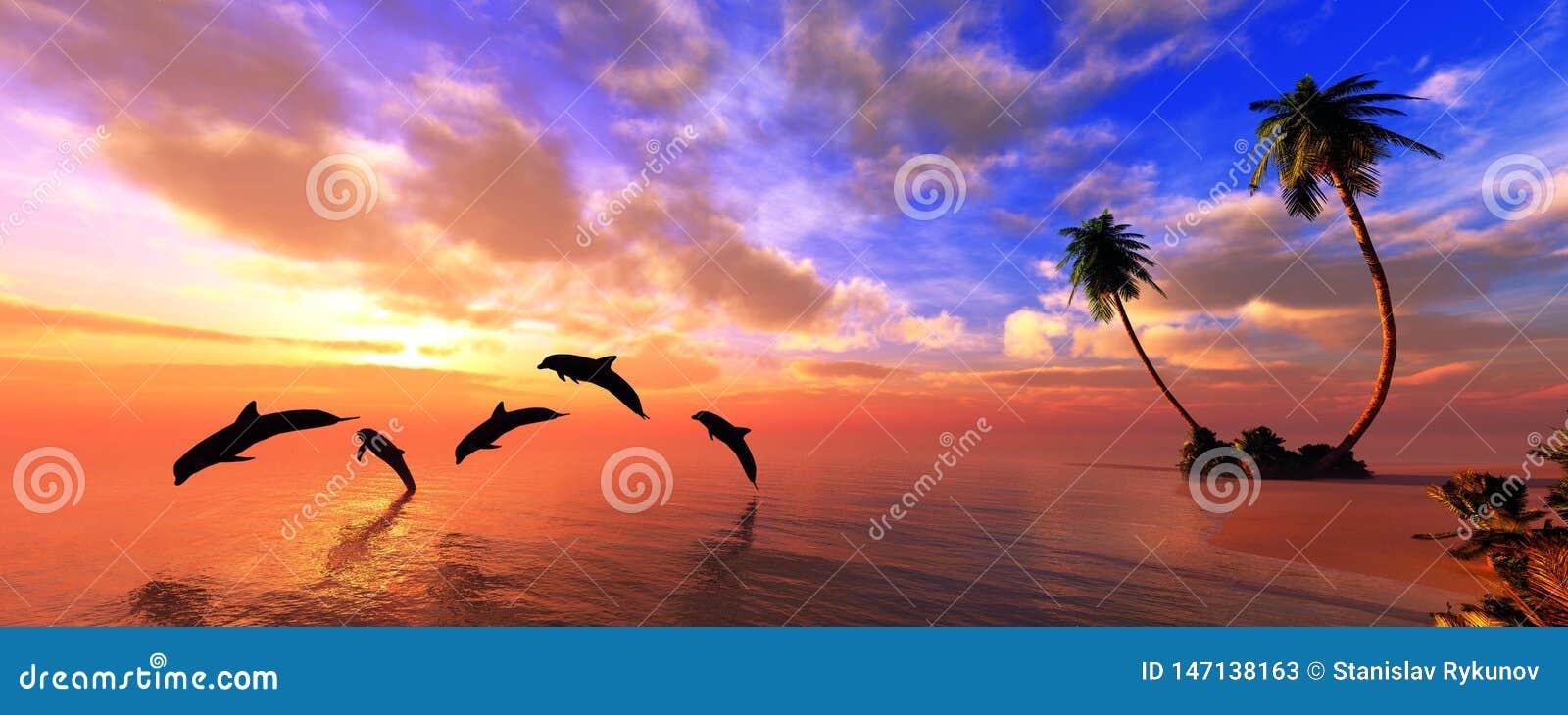 Mooi panorama van de overzeese zonsondergang