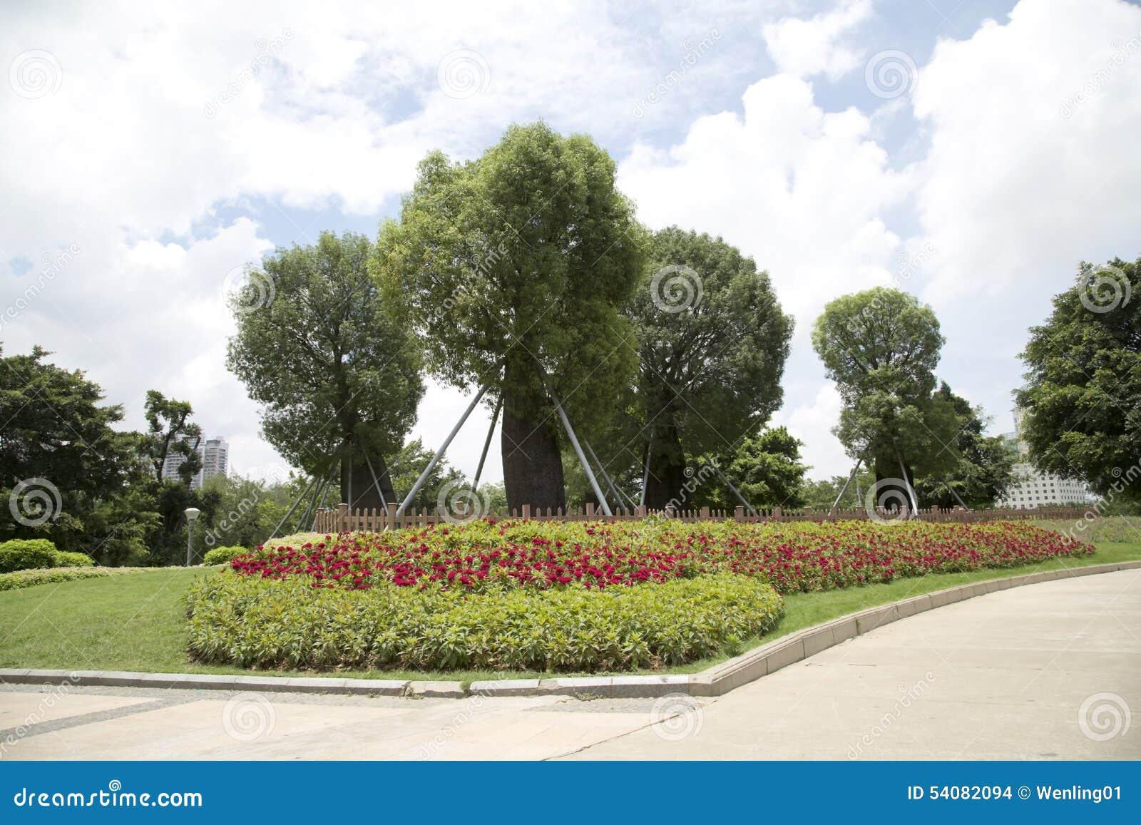 Mooi park in stad