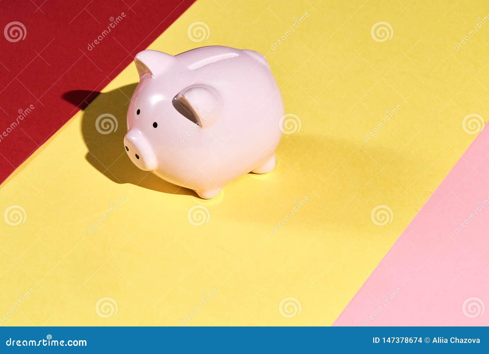 Mooi roze geïsoleerd spaarvarken op gele, roze en rode achtergrond