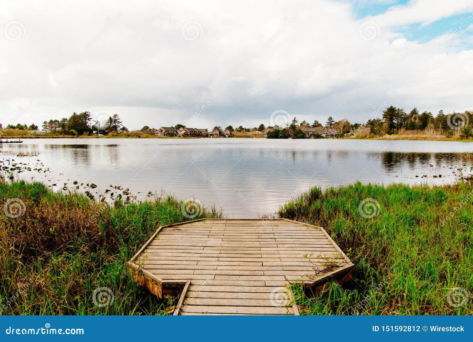 Mooi schot van een houten dok bij een meer in een bos