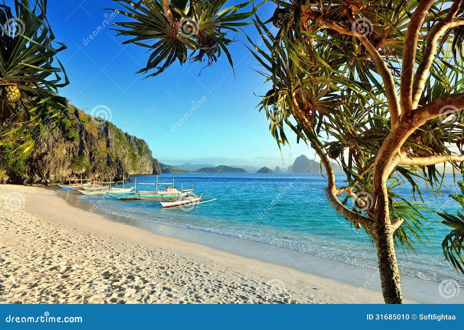 Georgia Beaches And Islands