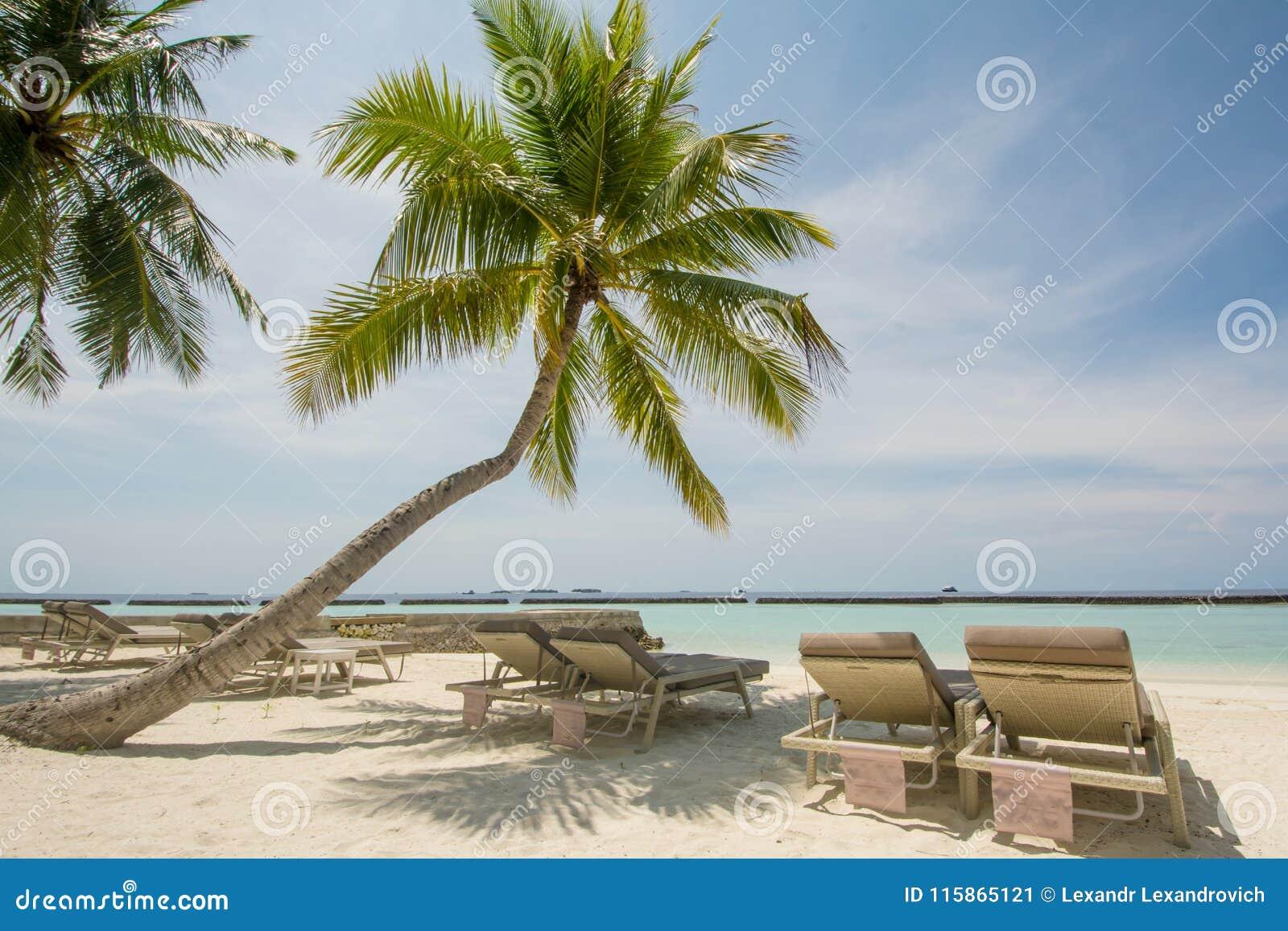 Mooi tropisch strandlandschap met oceaan en palmen, sunbeds bij het tropische eiland