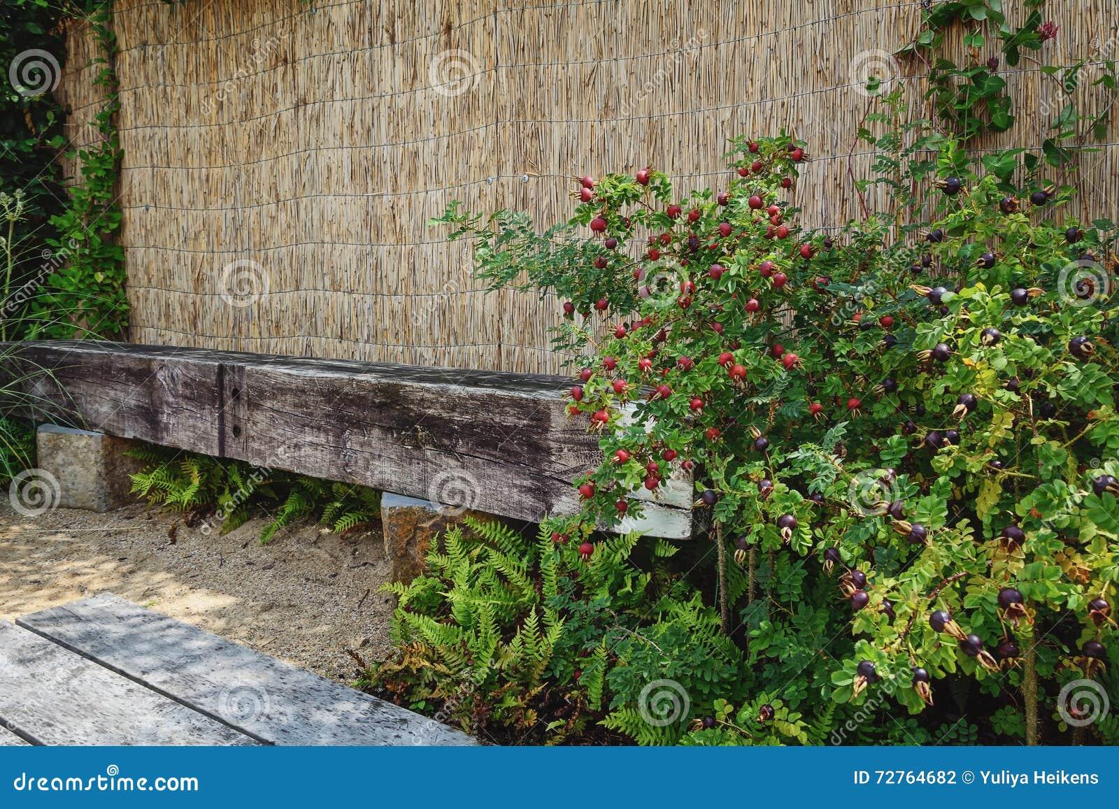 Mooi tuinidee in modeltuinen appeltern nederland stock foto