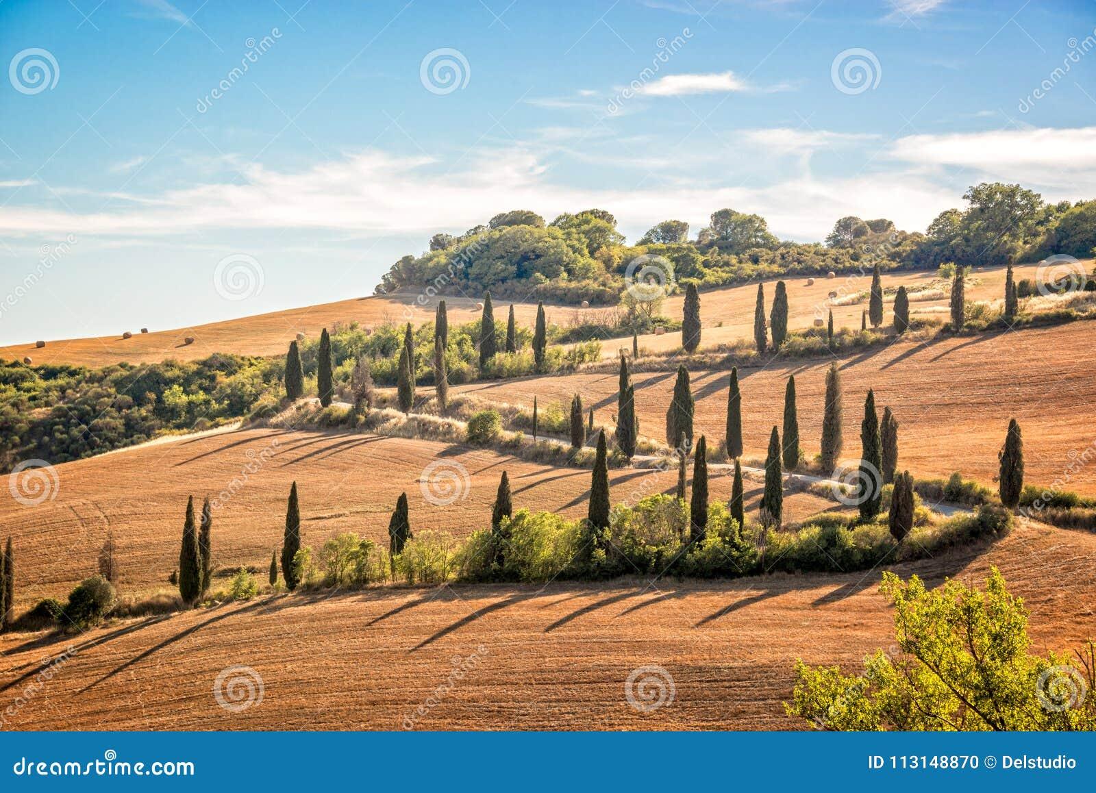 Mooi typisch landschap van Toscanië met rijen van cipressen, La Foce, Toscanië Italië