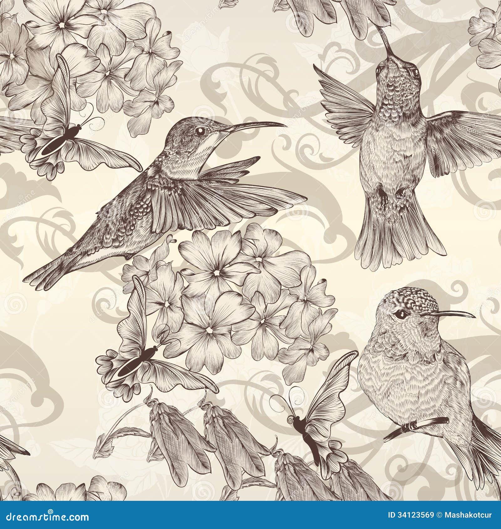 Mooi vector naadloos behang met humingbirds in wijnoogst royalty vrije stock afbeeldingen - Wijnoogst ...