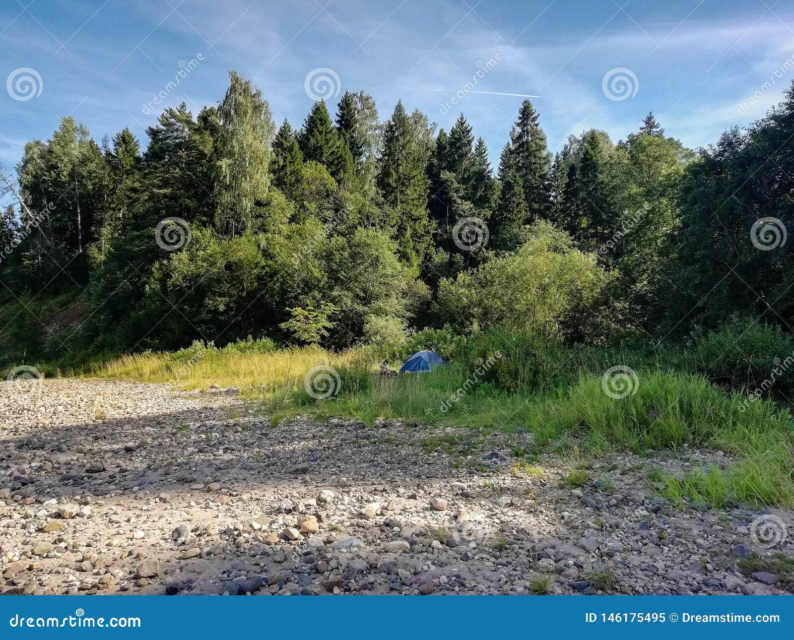 Mooie aard van Rusland bossen van Rusland Behandel aard 2
