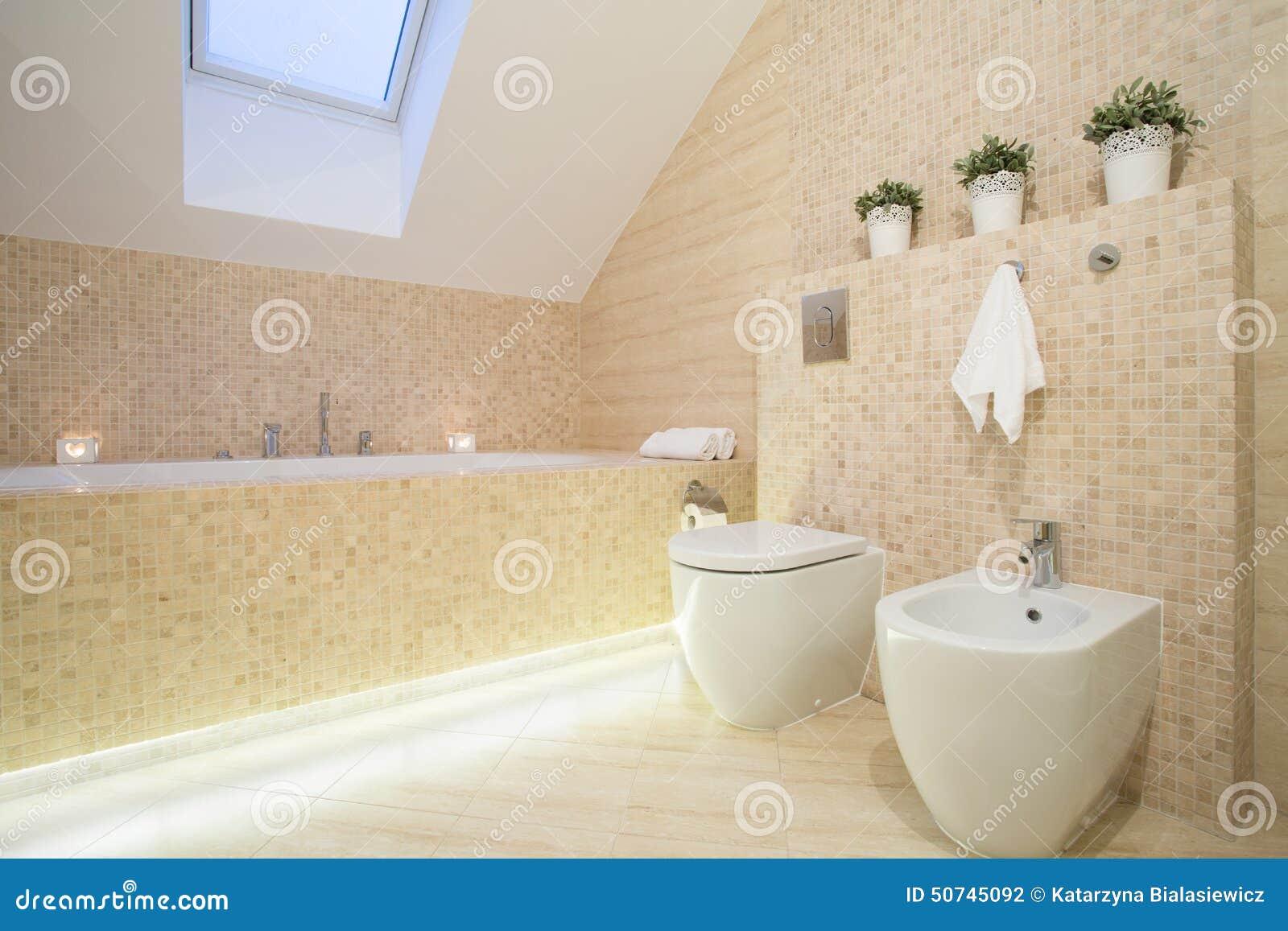 Mooie badkamers in beige kleur stock foto afbeelding 50745092 - Badkamers ...