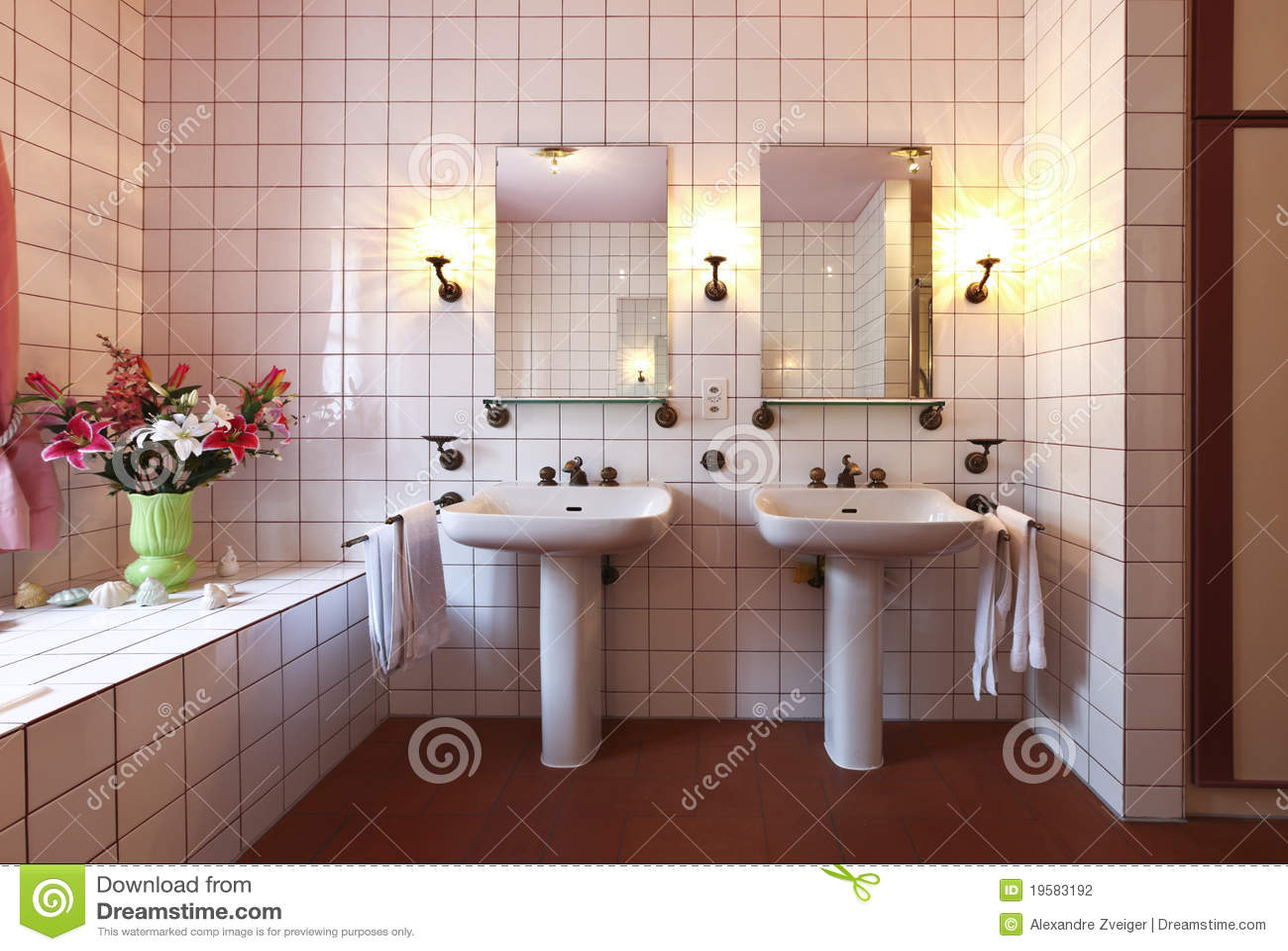 Mooie badkamers in klassieke stijl stock foto afbeelding 19583192 - Badkamers ...
