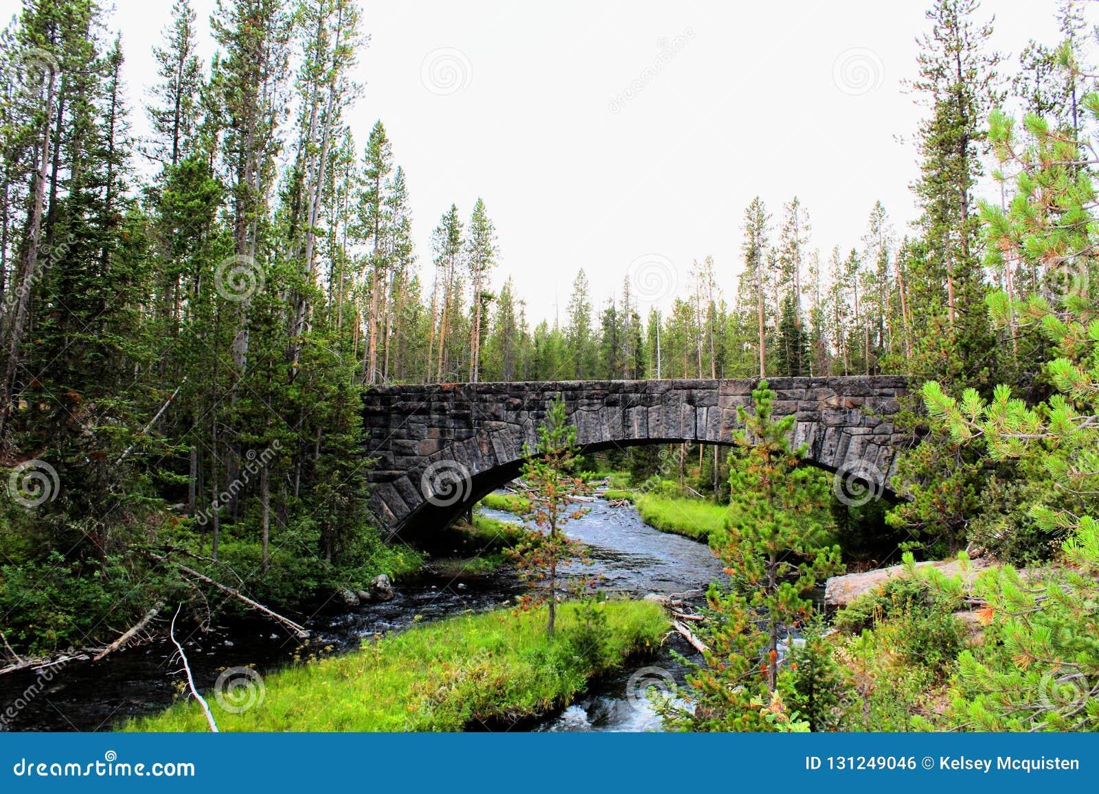 Mooie brug van het Yellowstone de Nationale Park met rotsen en mos en bossen schitterende kleuren