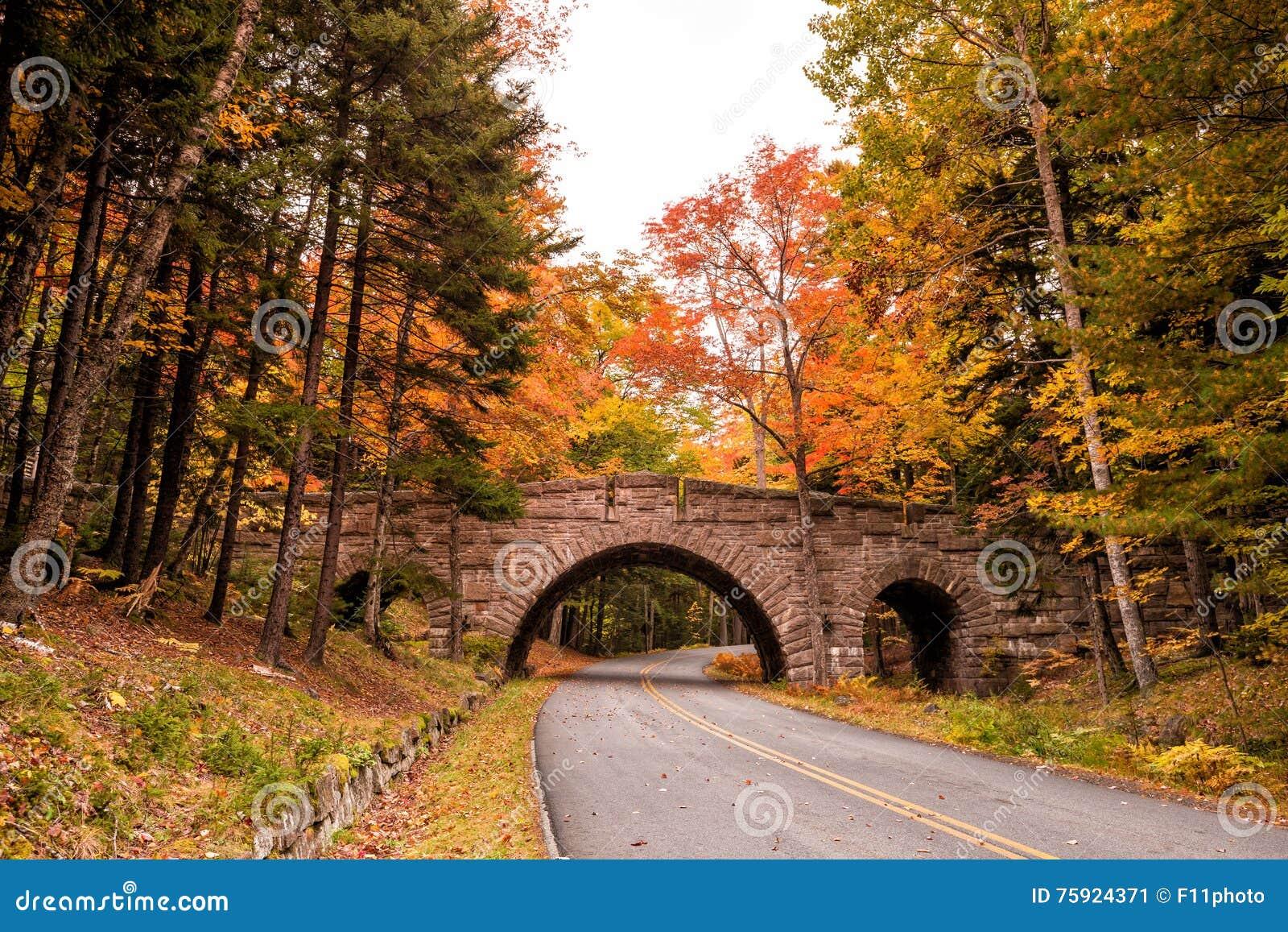 Mooie dalingskleuren van het Nationale Park van Acadia in Maine