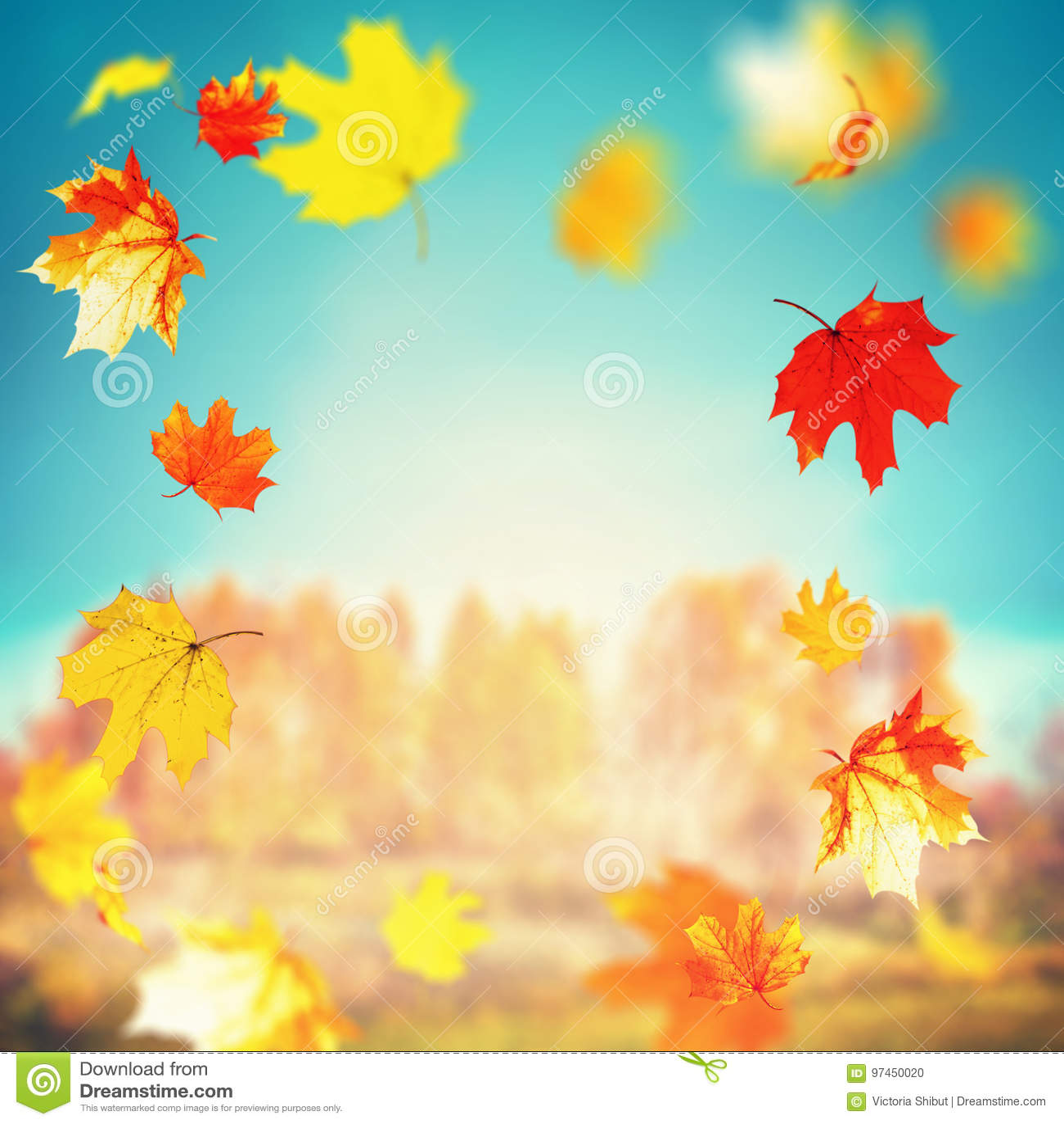 Mooie de herfst dalende bladeren op zonnige dag bij bomen en van de van het graslandschap en hemel achtergrond, openluchtdalingsa