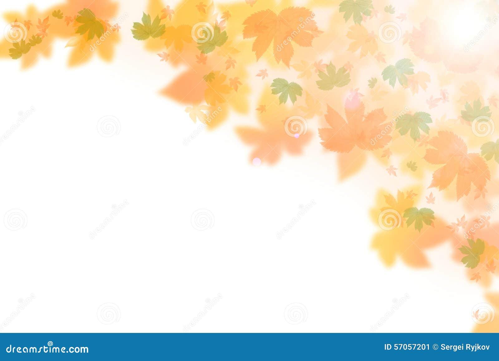 Mooie de herfstachtergrond