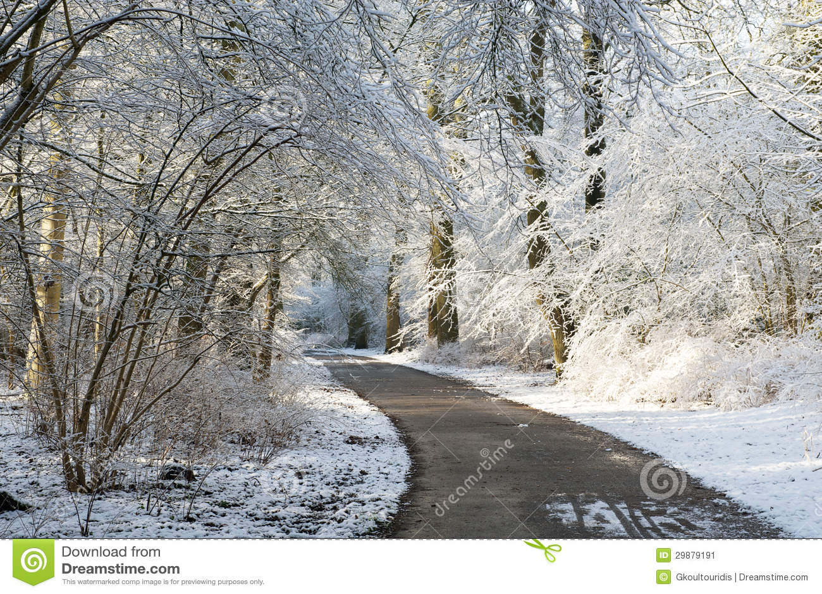 De steeg die van de winter tussen bomen lopen die met sneeuw worden behandeld