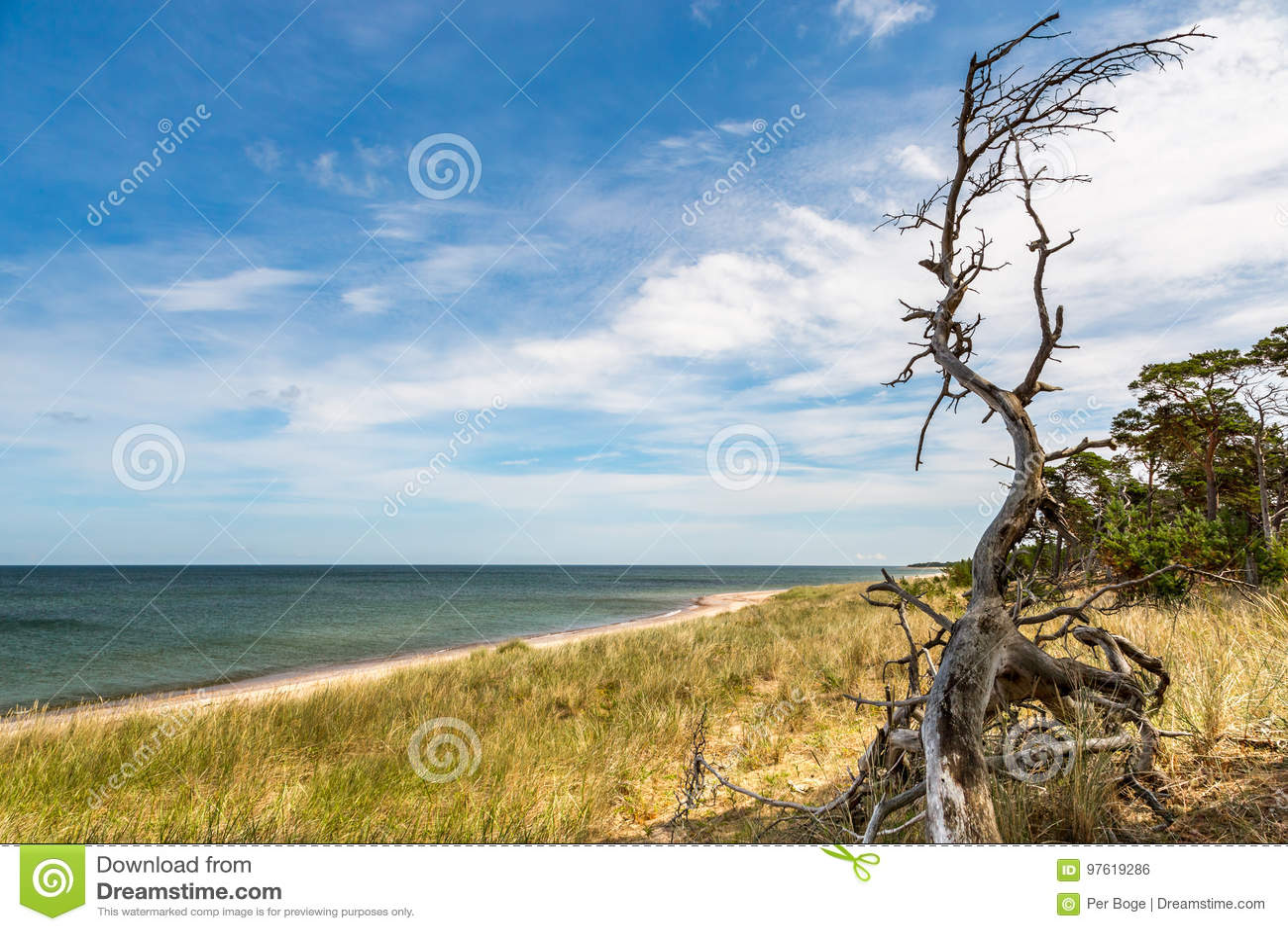 Mooie de zomermening van het eilandlandschap van overzees, strand, hemel en aard