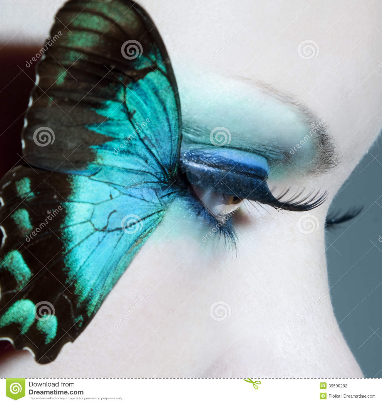 Mooie dichte omhooggaand van het vrouwenoog met vlindervleugels