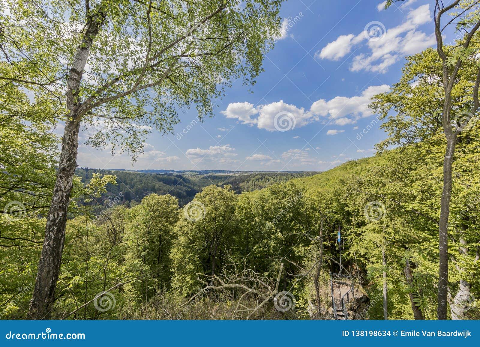 Mooie hoogste mening van de bossen van Luxemburg