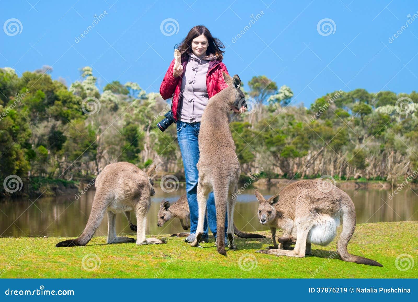 Mooie jonge vrouwen voedende kangoeroes