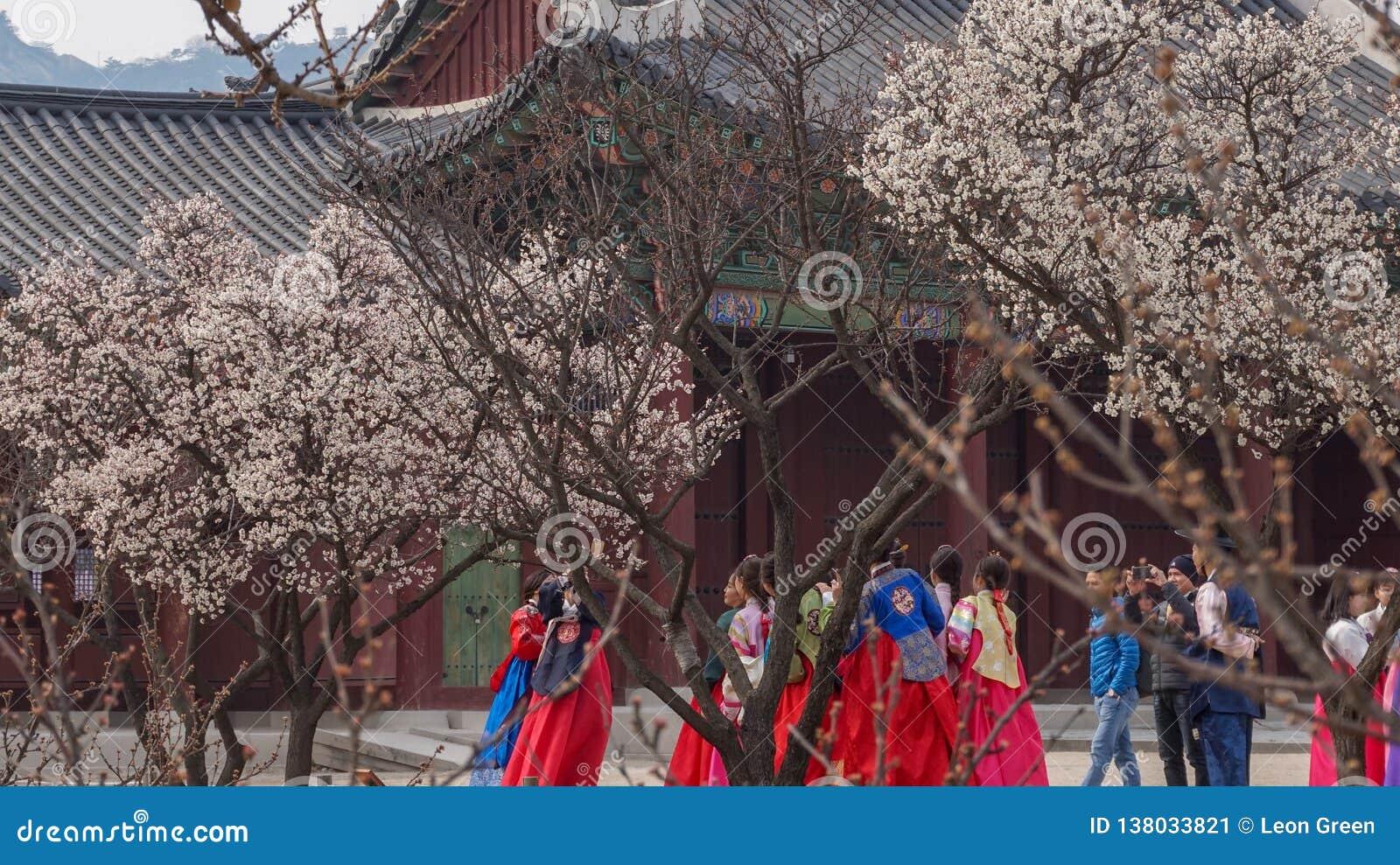Mooie Landschapsbeelden bij Gyeongbok-Paleis Seoel, Zuid-Korea