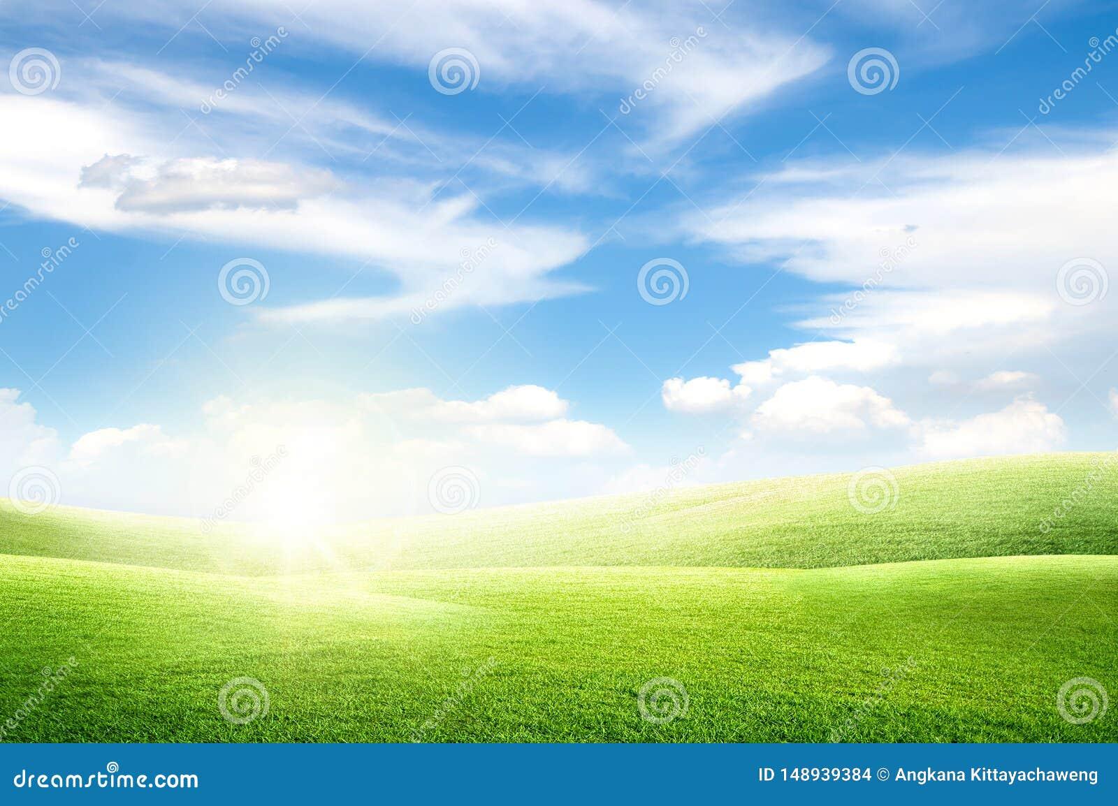 Mooie landschapsmening van het Groene gebied van de gras natuurlijke weide en weinig heuvel met witte wolken en blauwe hemel
