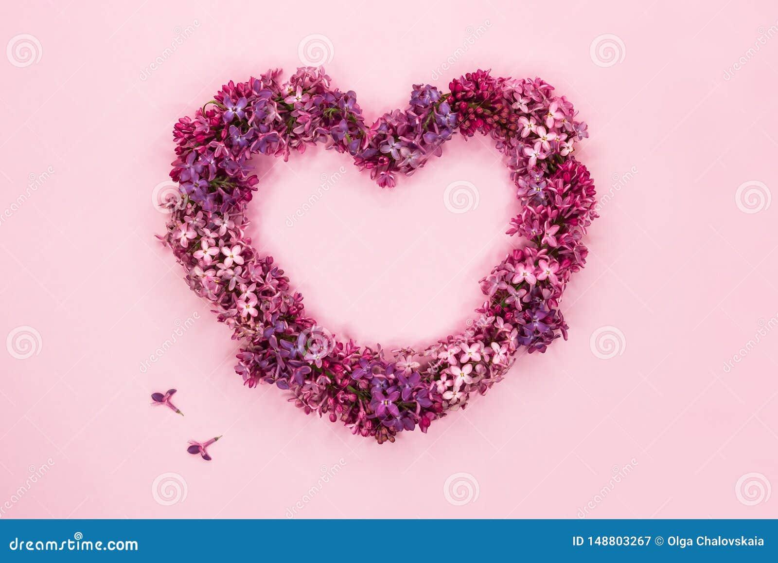 Mooie lilac bloemen in vorm van hart op pastelkleur roze achtergrond Hoogste mening De ruimte van het exemplaar