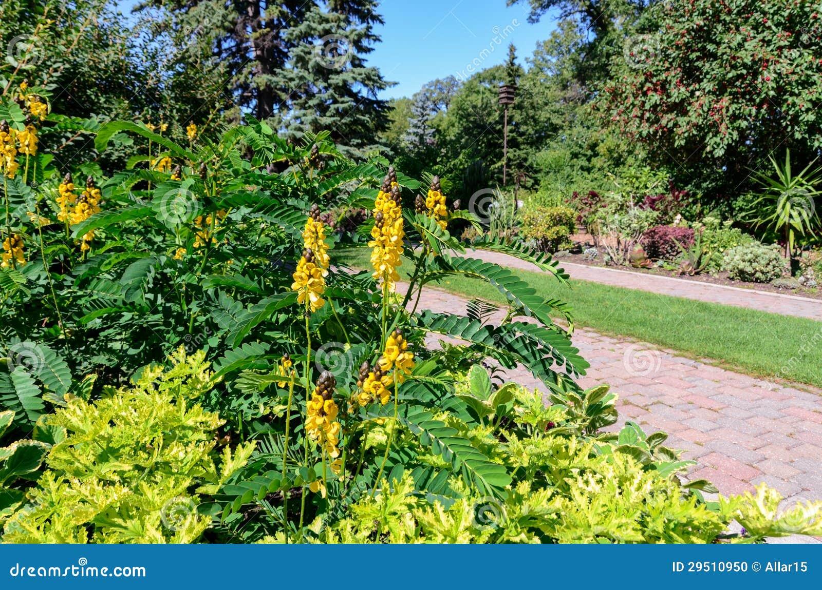 Mooie mening bij kleurrijke bloemen