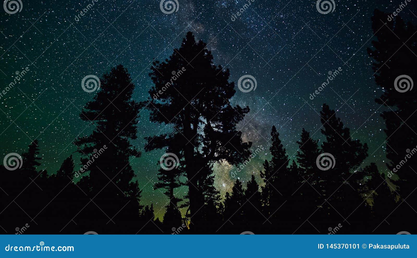 Mooie Nachtsterren en Melkweg in de Hemel