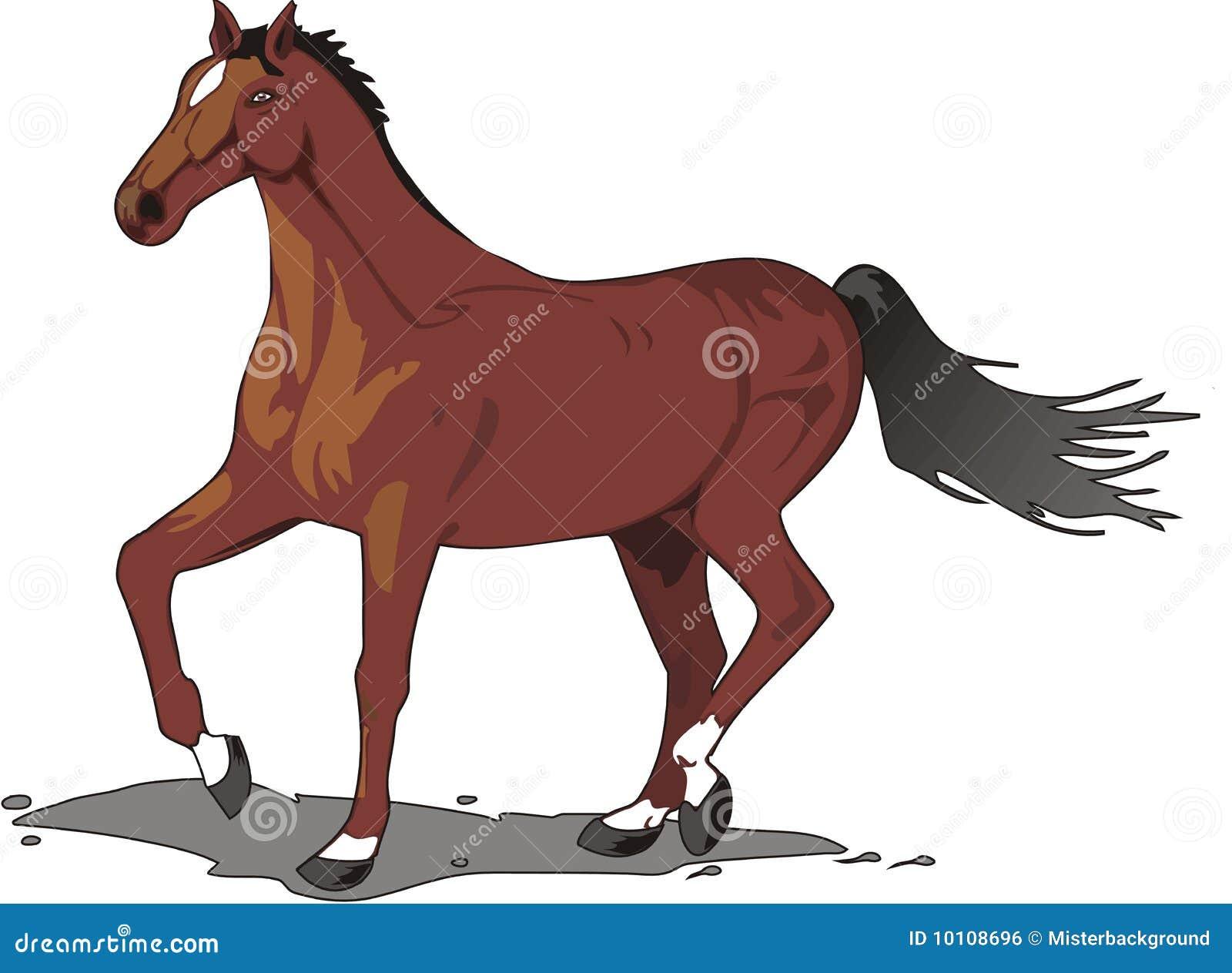 Mooie Paardtekening Kleur Vector Illustratie Afbeelding