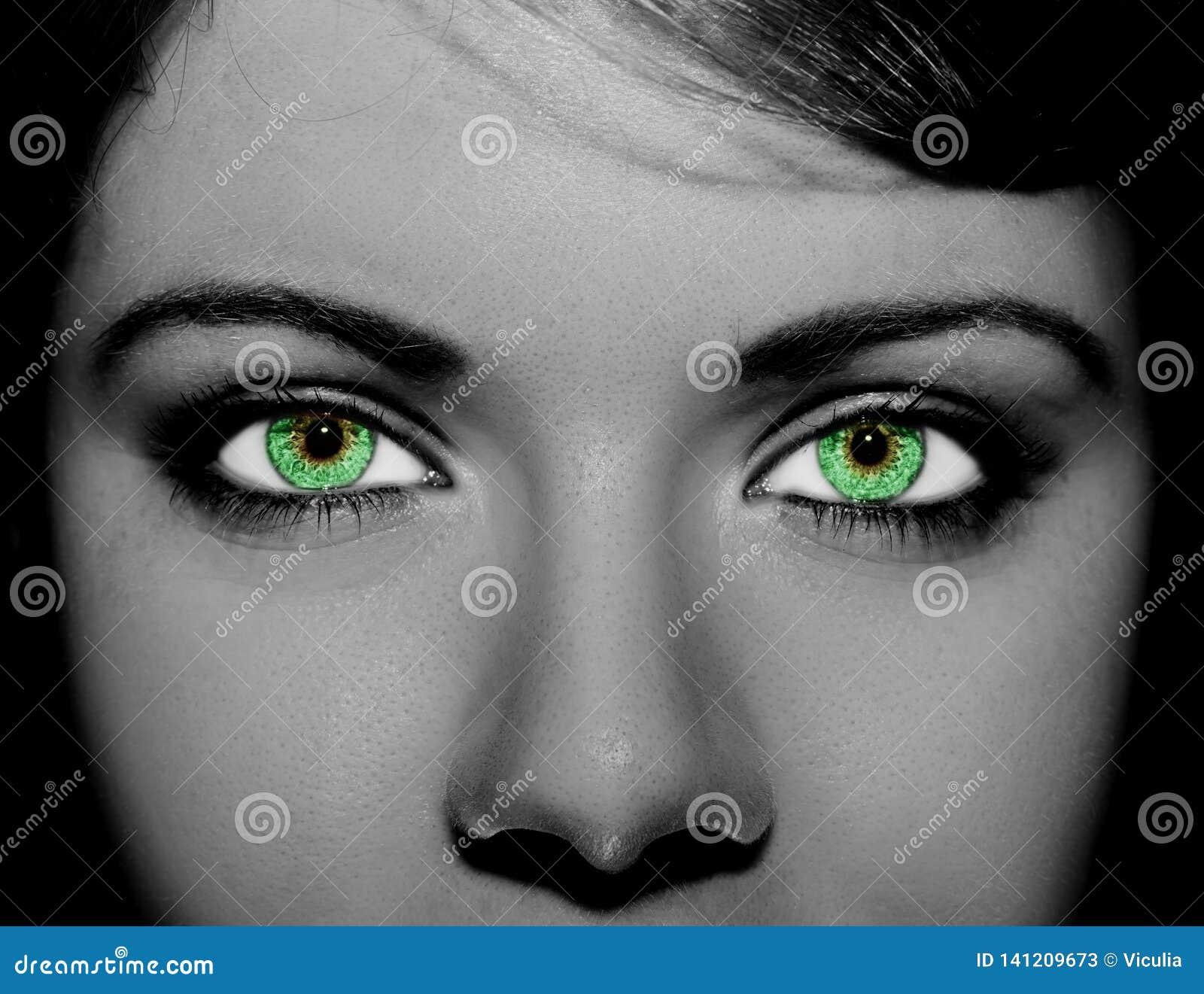 Mooie pienter kijkt oog Sluit omhoog geschoten