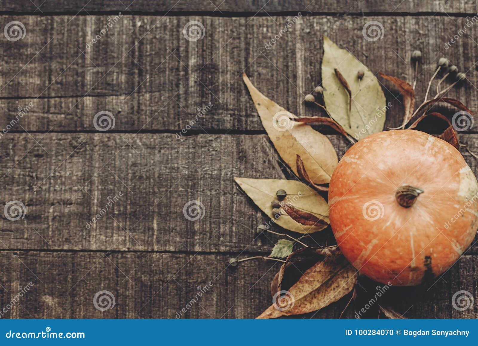 Mooie pompoen met bladeren en bessen op rustieke houten backg