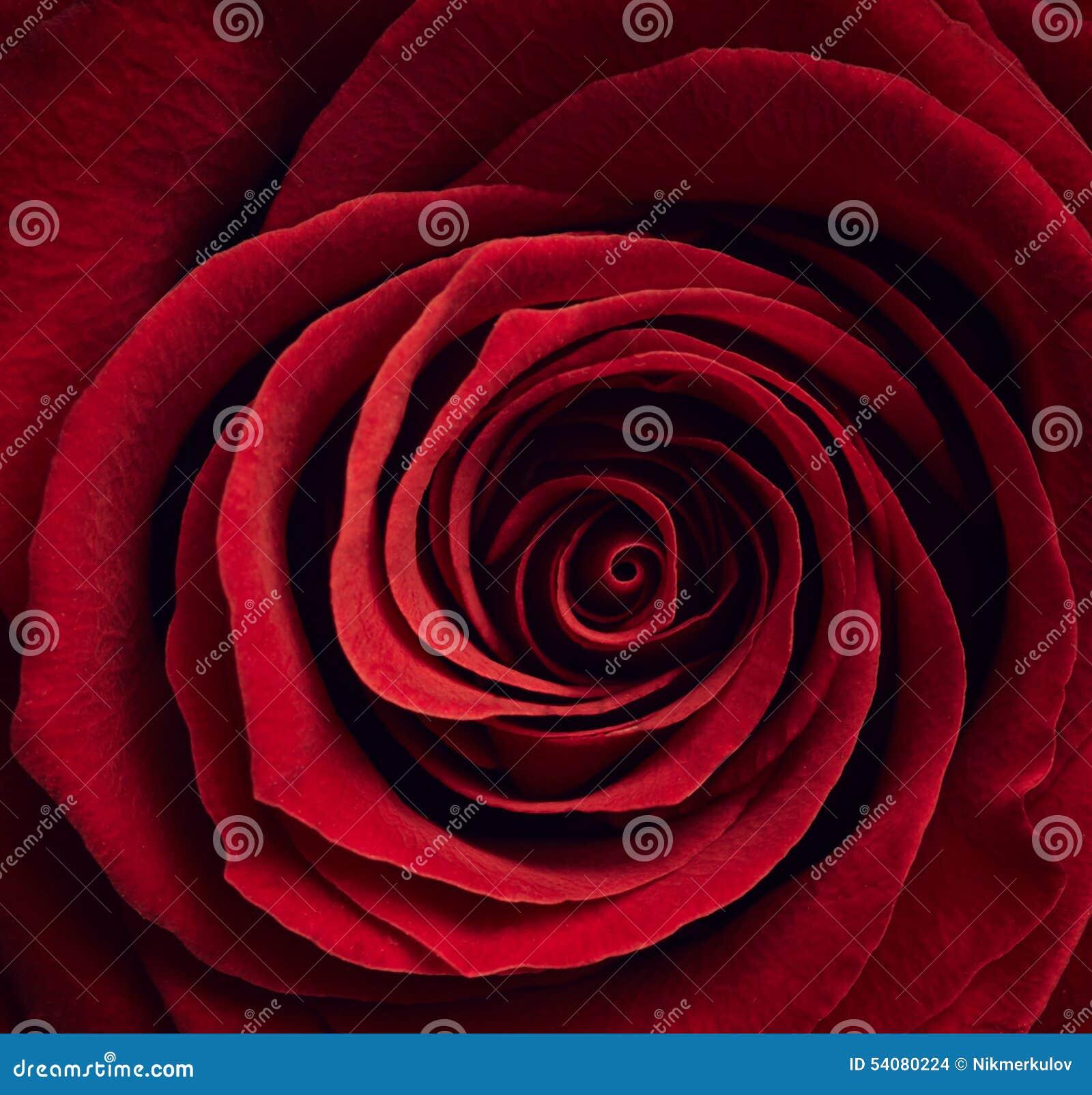 Mooie Rood nam toe