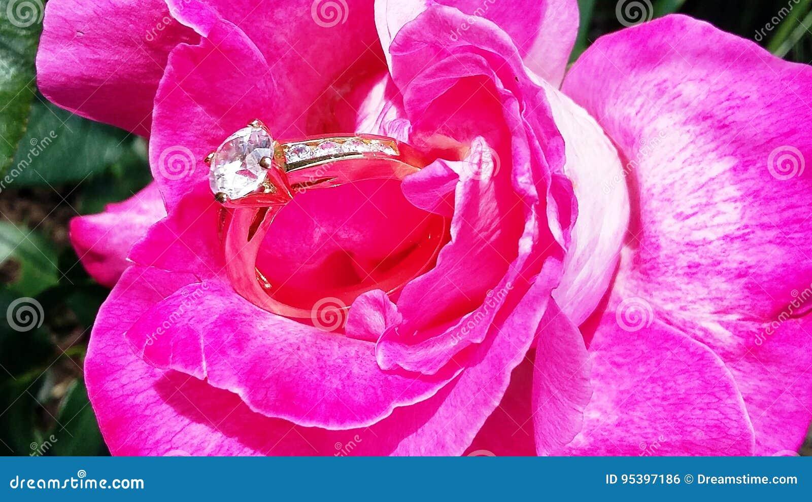 Mooie roze nam met een ring toe