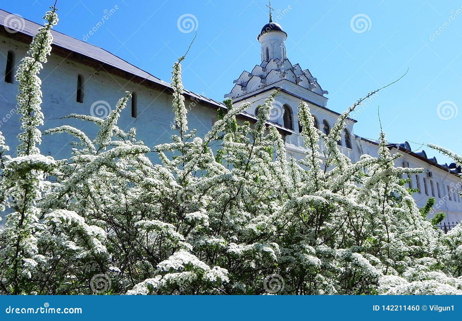 Mooie Russische Kerk Pasen, de lente ergens in het hart van Rusland