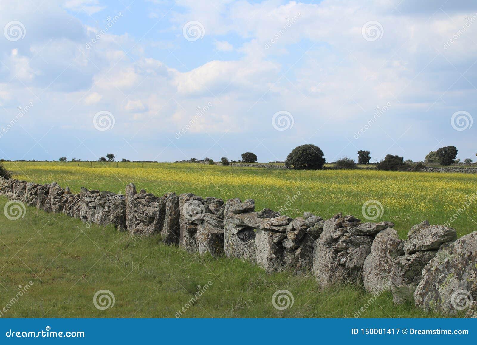 Mooie steenmuur die de gebieden en de dieren scheidt