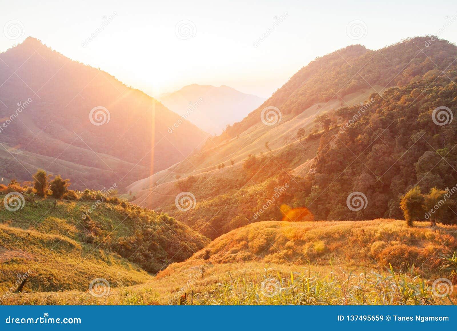 Mooie Tijd Helder en kleurrijk toneellandschap Het gouden zonlicht glanst onderaan rond de bergen en de padiegebieden fantastisch