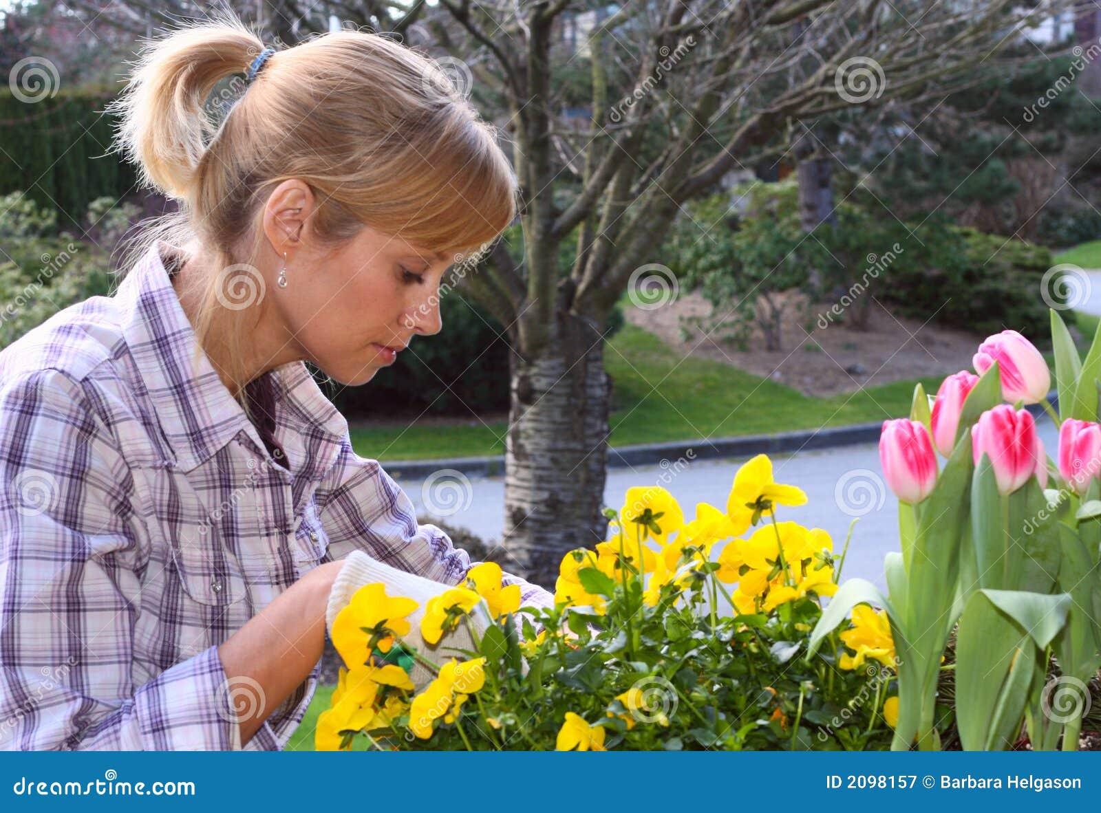 Mooie tuinman