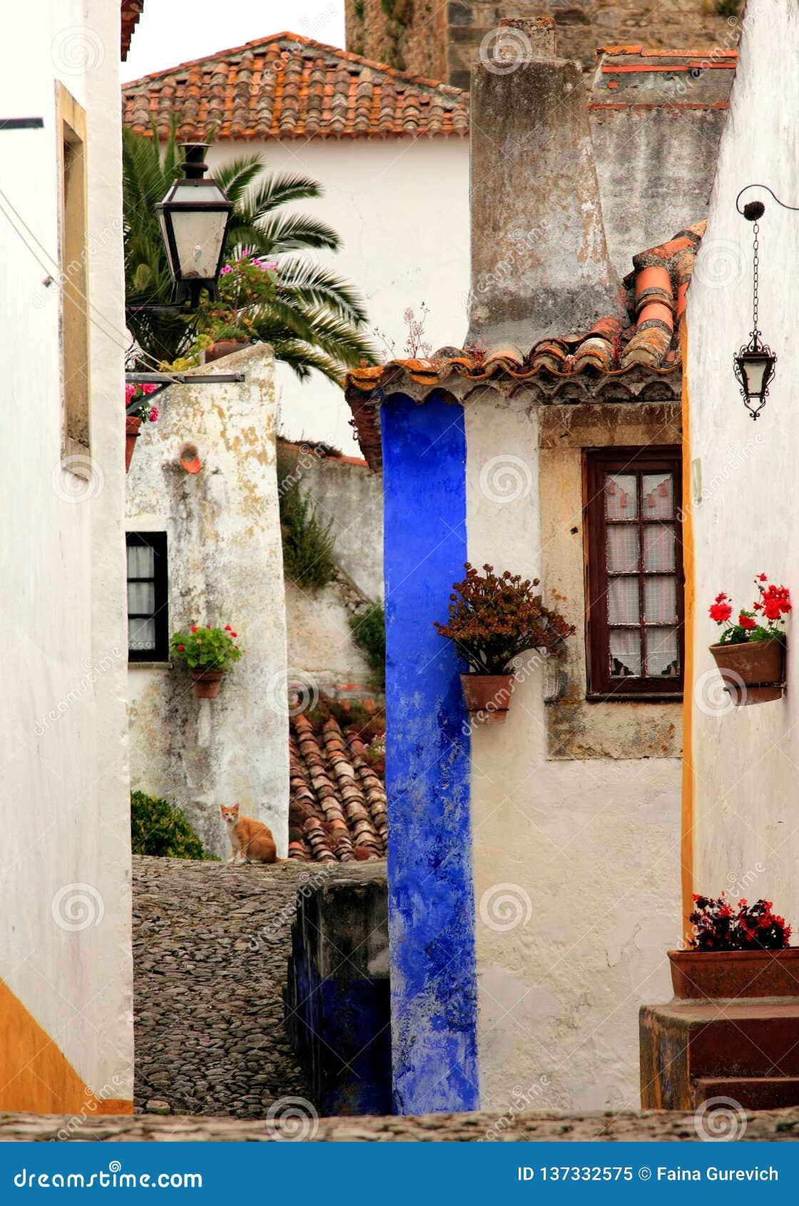 Mooie uiterst klein cobblestoned straat, muren, en daken op verschillende niveaus in Obidos, Portugal