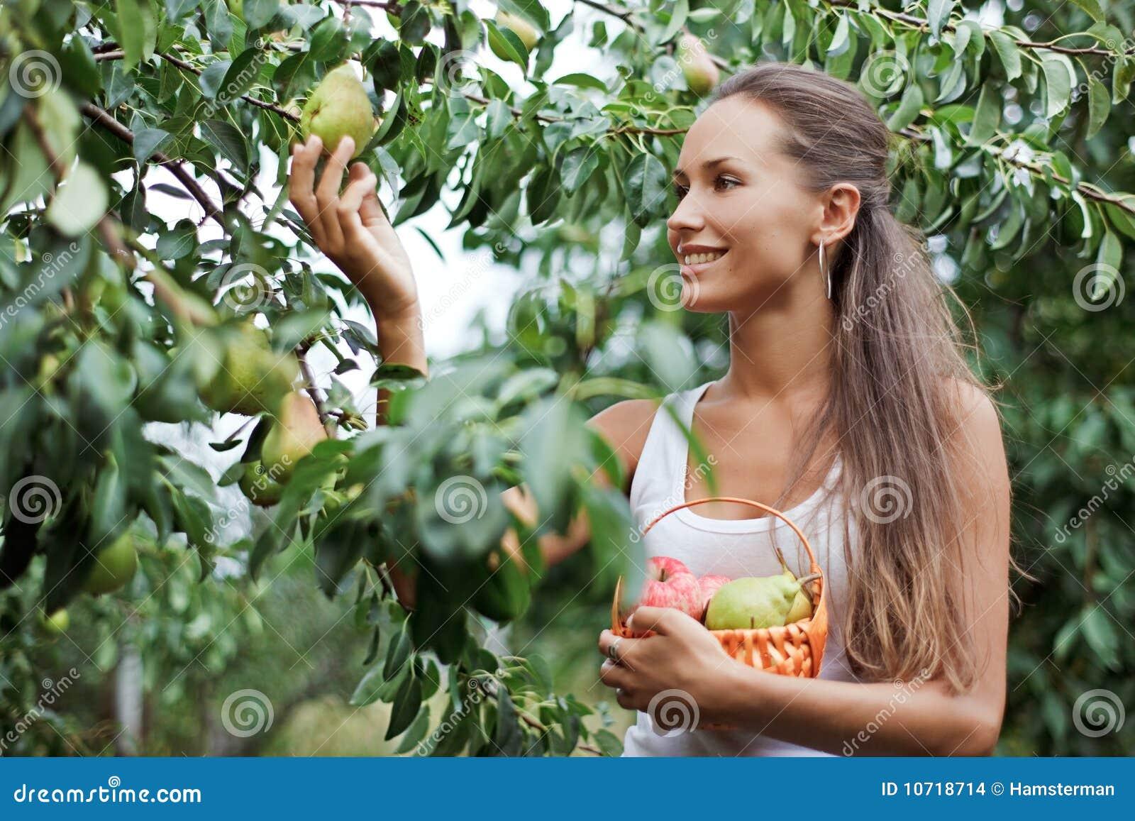 Mooie vrouw die de peer plukt