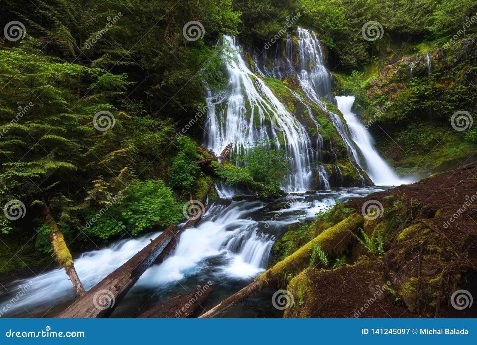 Mooie waterval in Douglas County in U S Staat van Oregon De lange blootstellingsschoten twee graden van water vallen en wat