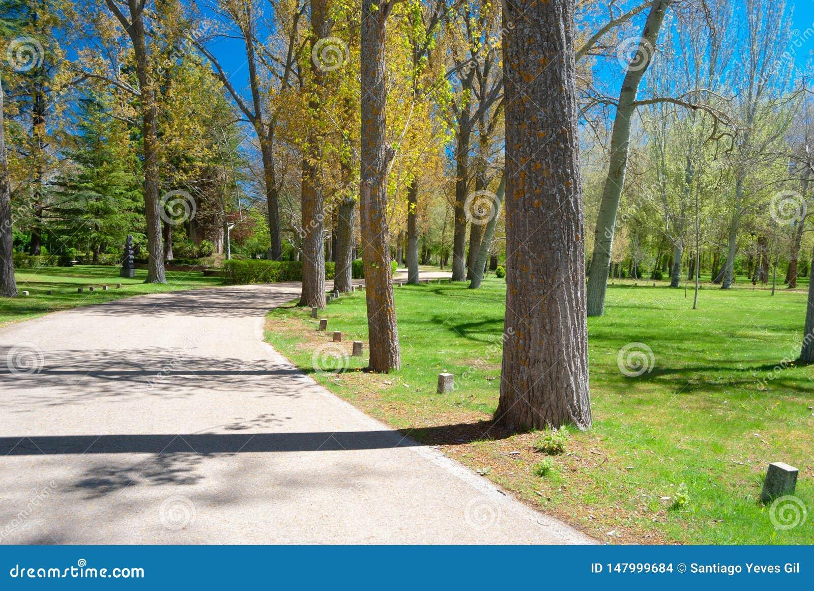Mooie weg met krommen langs een park