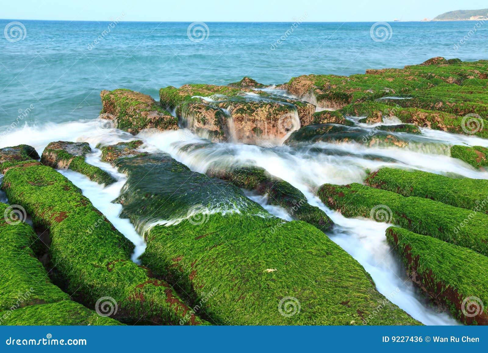 Mooie zeekust