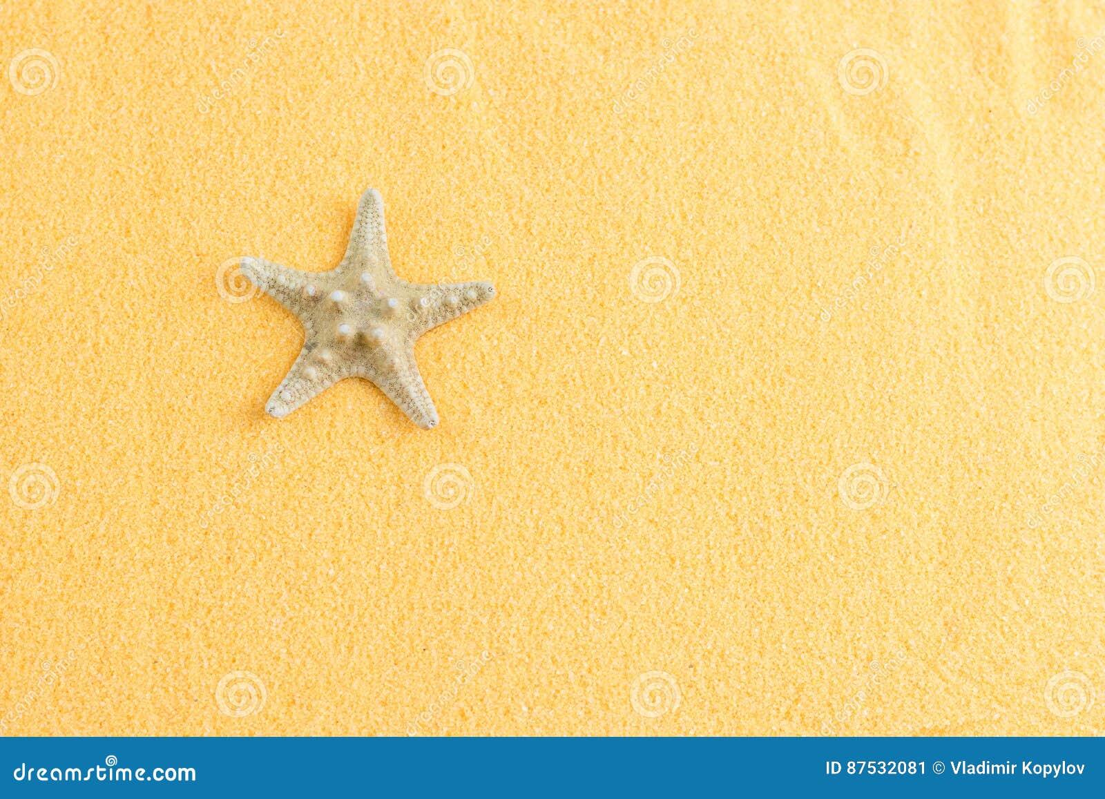 Mooie zeester op decoratieve oranje zand hoogste mening