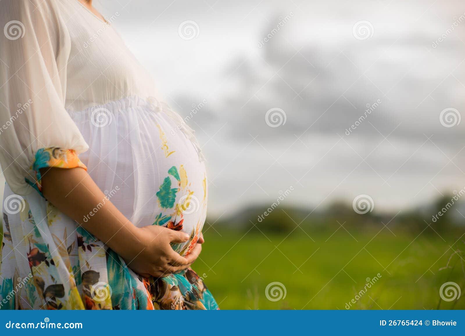 Mooie Zwangere Aziatische Vrouw in Padieveld