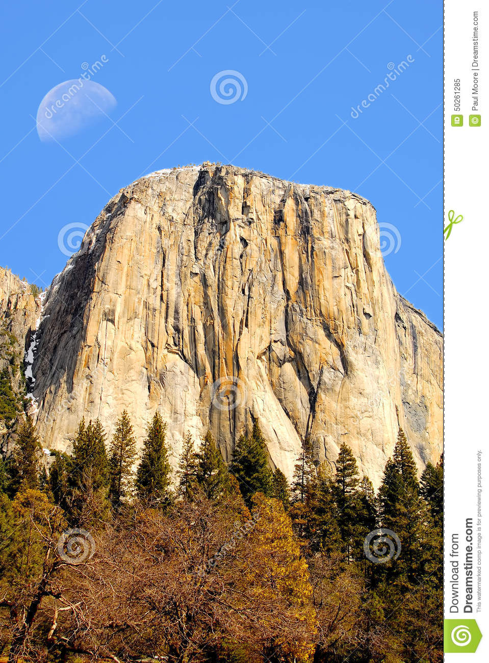 moon over el capitan stock image. image of grass, trees - 50261285