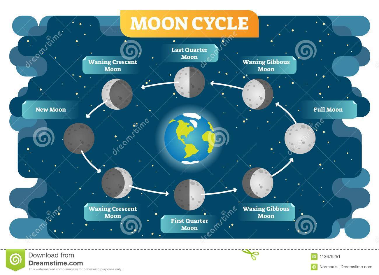Surprising Moon Phase Cycle Vector Illustration Diagram Poster Stock Vector Wiring Digital Resources Instshebarightsorg